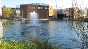 Water Gardens Fountain in the Lake